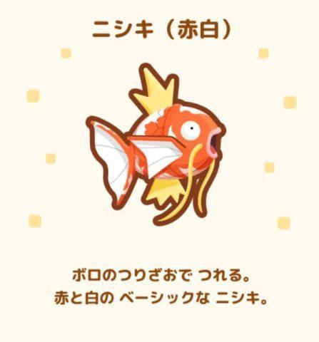 No.3 ニシキ(赤白)