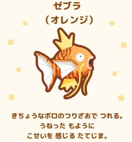 No.20 ゼブラ(オレンジ)