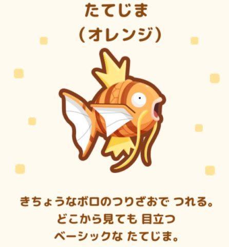 No.21 たてじま(オレンジ)