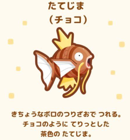 No.24 たてじま(チョコ)