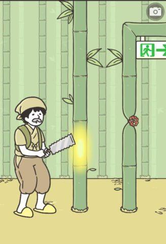 No.011 プリセンスかぐや
